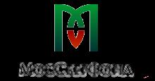 МосСберФонд - отзывы клиентов и информация